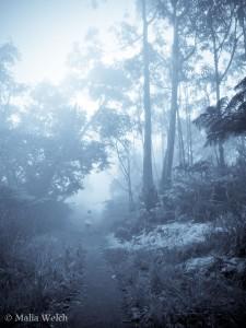 20131221_white_hike_017